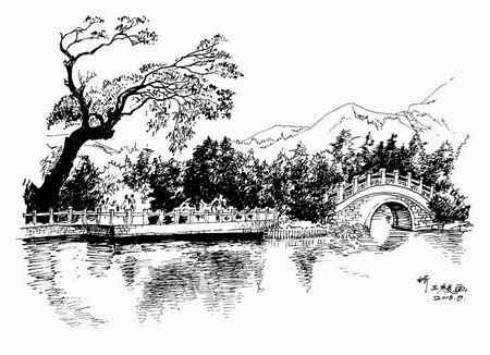 王骏钢笔画作品