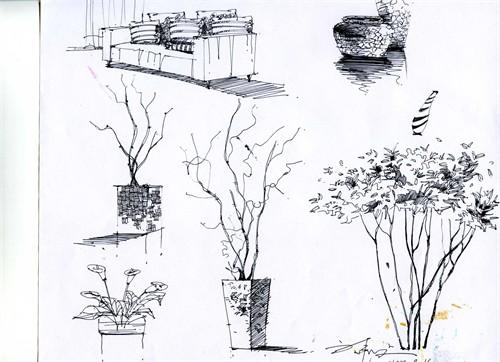 美国建筑手绘报的画法步骤