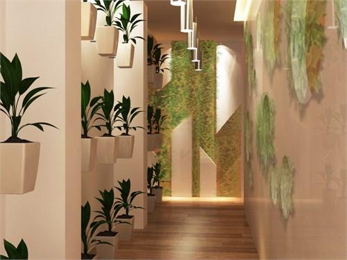 植物装饰墙面,可以更加深刻的突出生态主题,也可以改变室内空间氛围